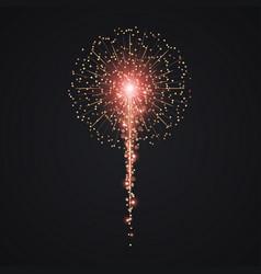 gold firework vector image