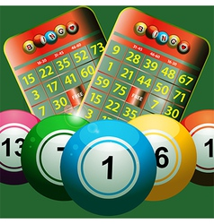 New bingo cards and bingo balls on green vector