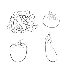 Set of vegetables coloring book contour vector