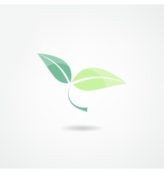 Green design vector image vector image