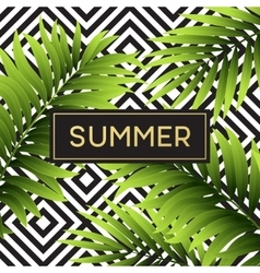 Tropical monstera leaves design for text card vector image