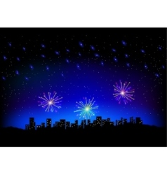 firework in sky on city scape vector image