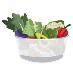 bowl salad vegetarian menu restaurant food vector image