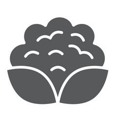 cauliflower glyph icon vegetable and diet vector image