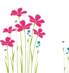 decoration flowers on a white background vector image