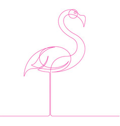 pink flamingo one single continuous line gr vector image
