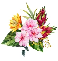 Watercolor tropical composition vector