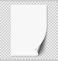 White realistic paper page vector