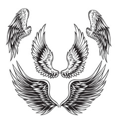 Wings bird feather black white tattoo set 11 vector