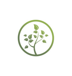 green tree organic environment logo vector image vector image