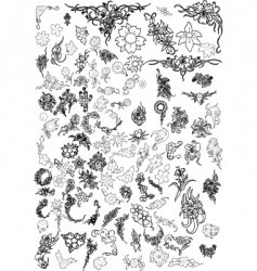 flowers and floral collection vector image vector image