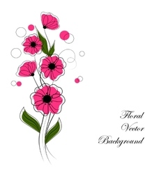 abstract bouquet pink flowers vector image