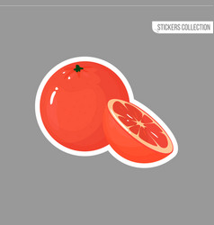 cartoon fresh grapefruit isolated sticker vector image