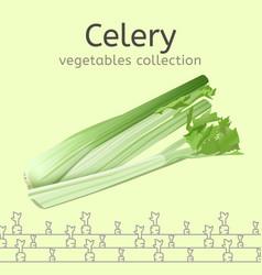 celery image vector image