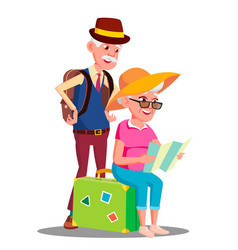 elderly couple at the airport with suitcases vector image