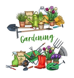 gardening banner with tools vector image
