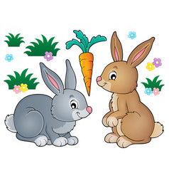 Rabbit topic image 1 vector