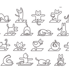 Seamless pattern a cat doing yoga exercises vector
