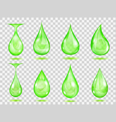 transparent green drops vector image