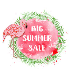 tropical background for summer sale with flamingo vector image