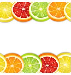 citrus fruits slices seamless horizontal pattern vector image
