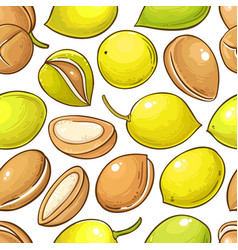 Argan nuts pattern on white background vector