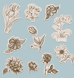 Collection of flowers in tags vector image