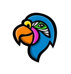 Parrot head mascot vector