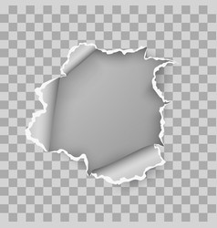 ragged hole torn in ripped sheet paper vector image