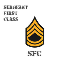Realistic icon chevron sergeant vector