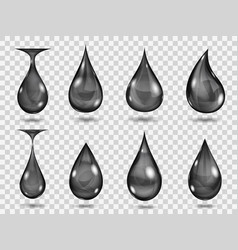 transparent black drops vector image