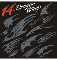Wings of the dragon vector