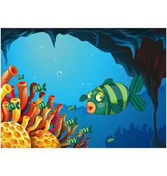 A school of stripe-colored fishes under the sea vector image