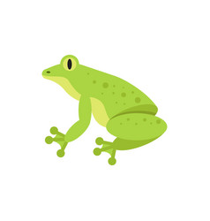 flat style of frog vector image vector image