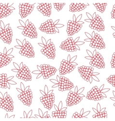 pattern of berries vector image vector image