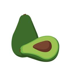 avocado fresh raw food nutrition vector image