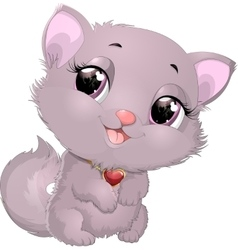 Beautiful gray kitten with heart vector image