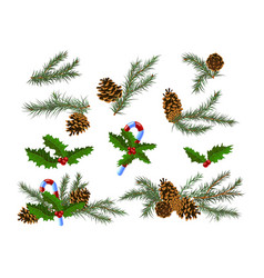 set christmas festive decor with fir-tree vector image