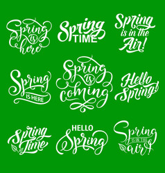 Spring lettering for springtime season holiday vector