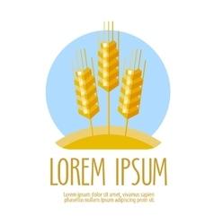 Wheat logo design template harvest vector