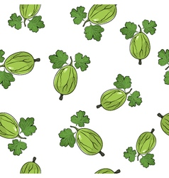 Seamless pattern of gooseberry vector