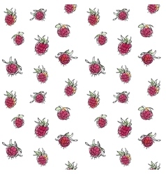 Raspberry seamless pattern vector image