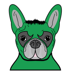 Superhero dog in green with tangled hair vector