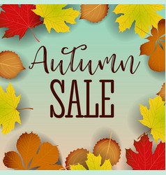 autumn calligraphy seasonal letteringweb banner vector image