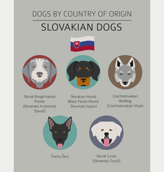 dogs by country belgium 1 vector image