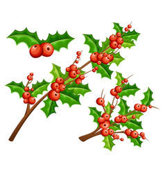 Flat mistletoe decorative branches with red vector