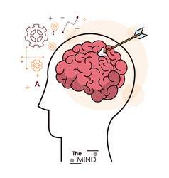 mind head human brain arrow strategy business vector image