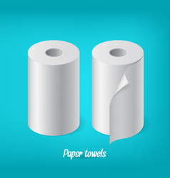 realistic paper roll set kitchen towel cash tape vector image