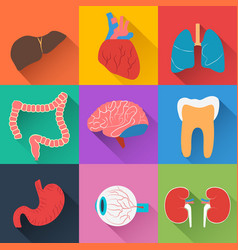 medical health collection vector image