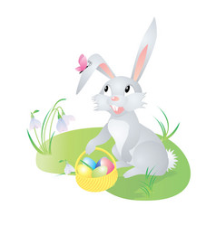 spring hare with butterfly vector image vector image